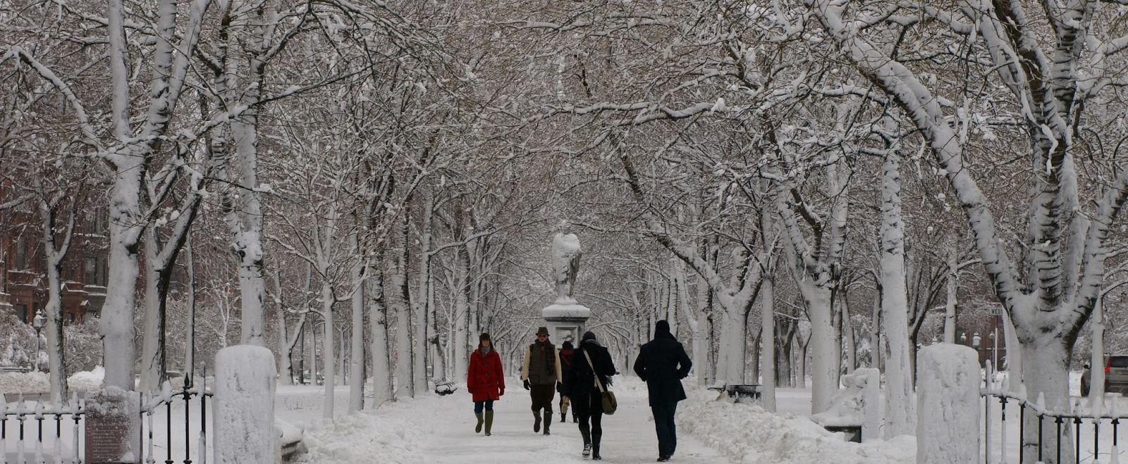 Boston Commons Snow Storm