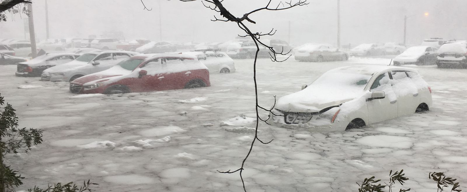 Cars parked by Boston's waterfront are flooded with snow and water