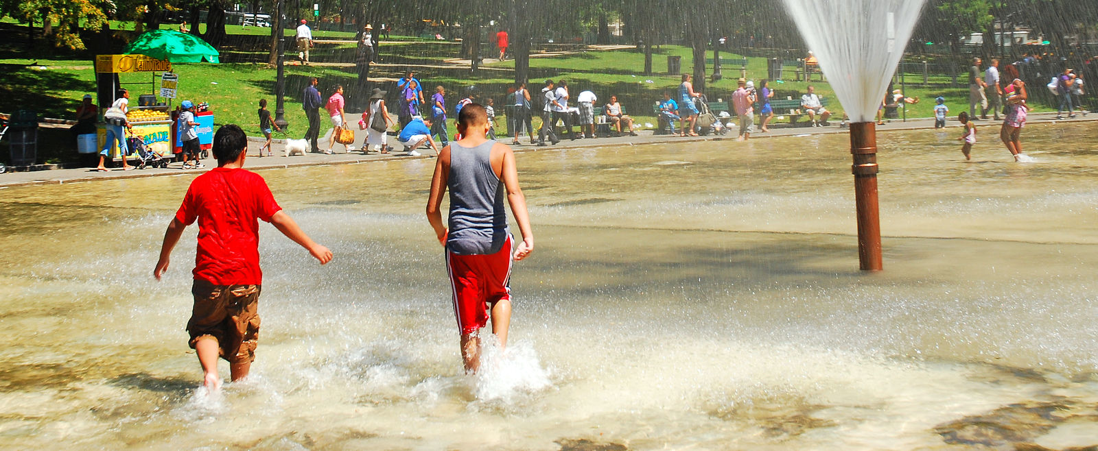 Teenagers play in Frog Pond in the summer.