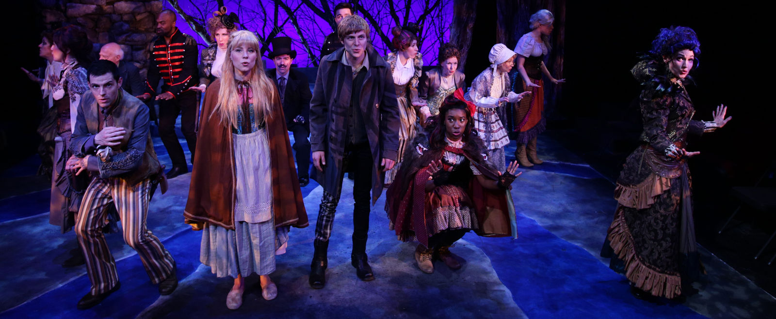 Lyric Stage Into the Woods