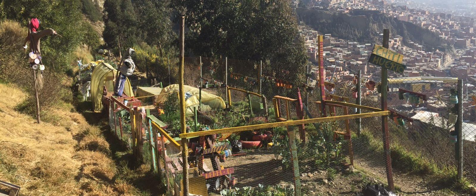 Barr Fellows Garden