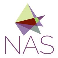 National Arts Strategies